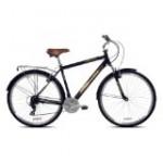 Recreational Bikes